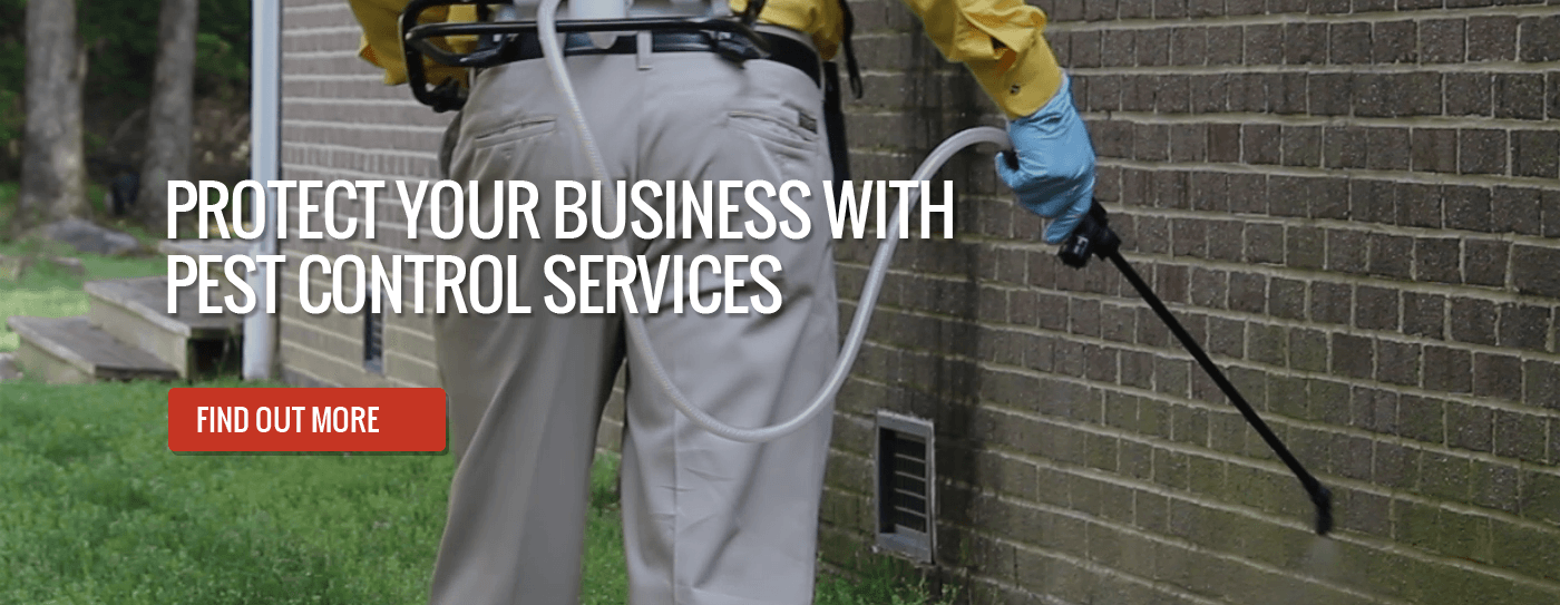 Protect Your Business with Pest Control Services Banner