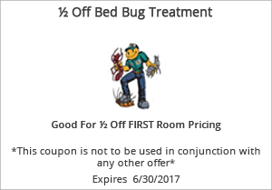 ½ Off Bed Bug Treatment